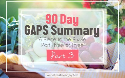 90 Day GAPS Summary: A Piece To the Puzzle (Part three of three)