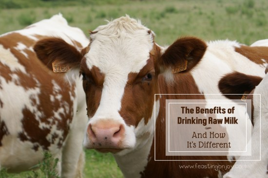 The Benefits of Drinking Raw Milk and How It's Different | Feasting On Joy