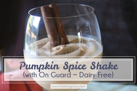 Pumpkin Pie Spice Shake {with On Guard Essential Oil ~ Dairy Free} 1 | Feasting On Joy