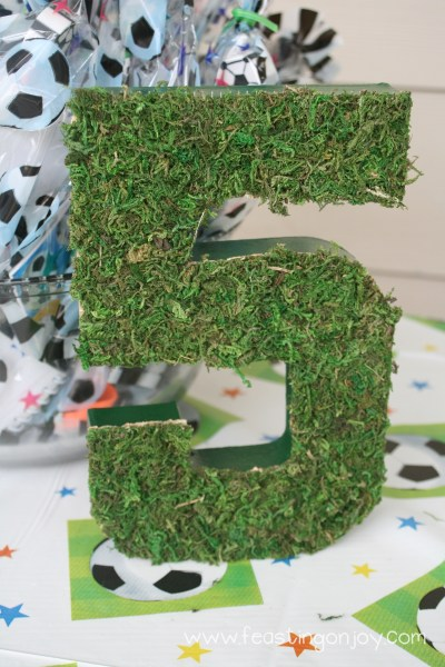 Soccer Birthday Party Grass Number 5