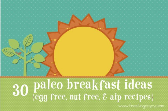 30 Paleo Breakfast Ideas Egg Free Nut Free and AIP