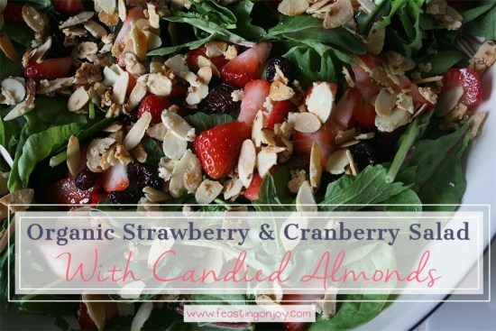 Organic Strawberry & Cranberry Salad with Candied Almonds 1 | Feasting On Joy