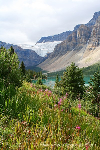 Lake at Icefields