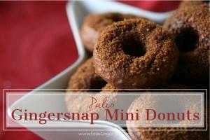 Paleo Gingersnap Mini Donuts