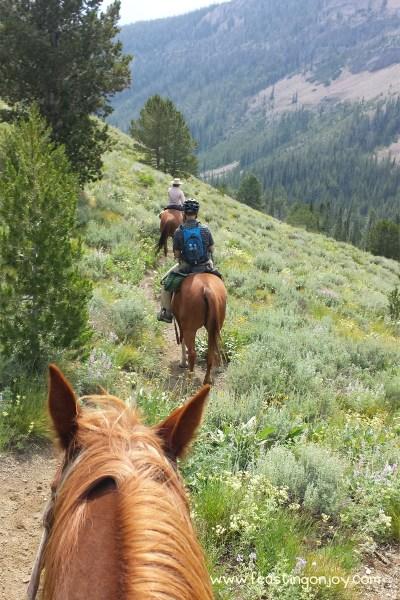 Steve on his horse