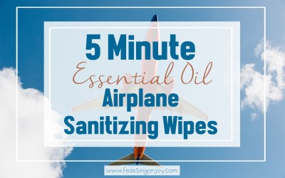 5 Minute Essential Oil Airplane Sanitizing Wipes