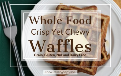 Whole Food Nut Free Dairy Free Crisp Yet Chewy Waffles
