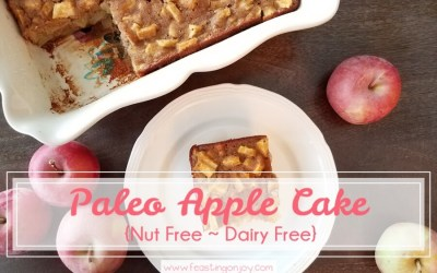 Paleo Apple Cake {Nut Free ~ Dairy Free}
