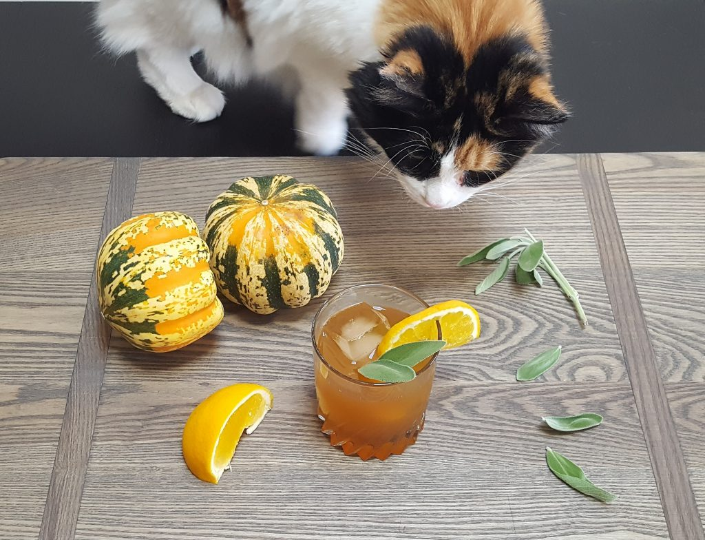 Midna & Fall Cocktail Photo Shoot | Feast In Thyme