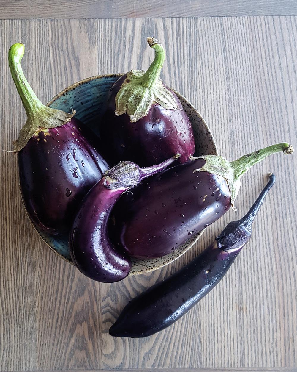 Bowl of dark purple eggplants. | FeastInThyme.com