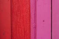 color-hunting-series-A019