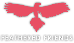 Feathered Friends Logo