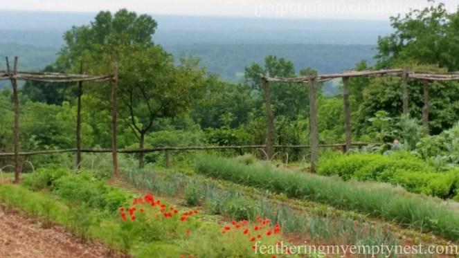 Garden at Monticello --History Geeks' Tour of Monticello