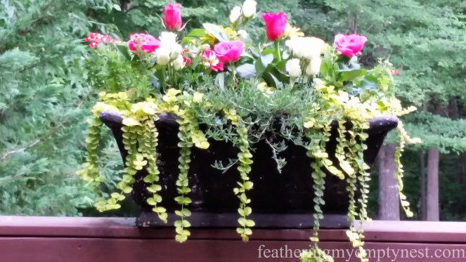 Flower box crazily studded with pink and white cut flowers for Romantic Flower-themed Summer Tablescape