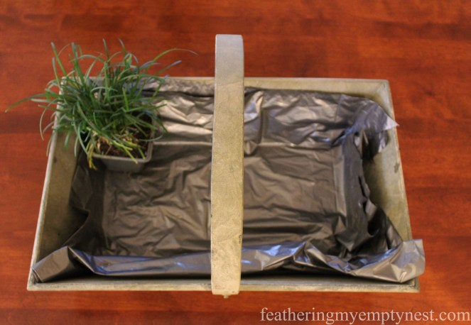 Fill galvanized basket lined with a heavy duty garbage bag with pots of Mondo Grass --How To Make A Live Grass Centerpiece For Your Spring Table