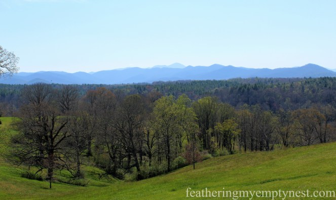 View of the Blue Ridge Mountains from the terrace of the Biltmore Mansion in Asheville, NC --A Spring Tour Of The Biltmore Estate Gardens