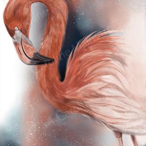 Flamingo Nebula 8×10 Print