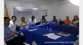 Junta Directiva Fecolper 2017