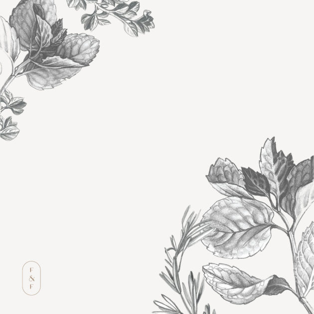 Fed-&-Full-herb-illustrations