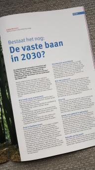 De vaste baan in 2030?