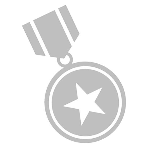 Prize icon - grayscale on white background