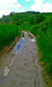 drumul spre canion (5)