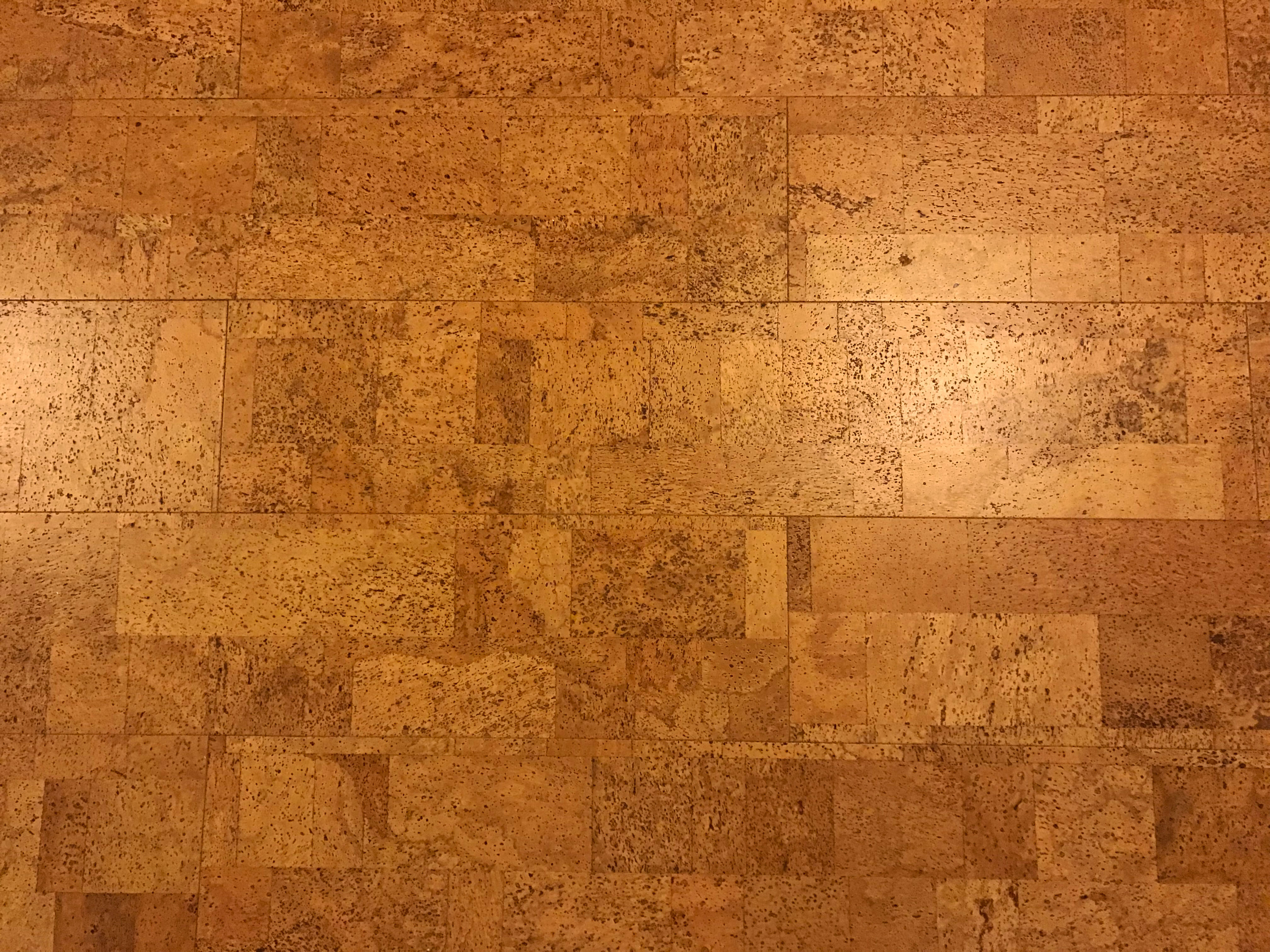 Cork Floor - House Renovation