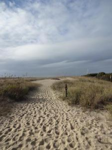 Fort Fisher Recreation CenterTrail
