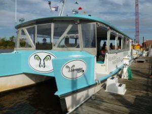 Wilm Water Tours - Black River Cruise