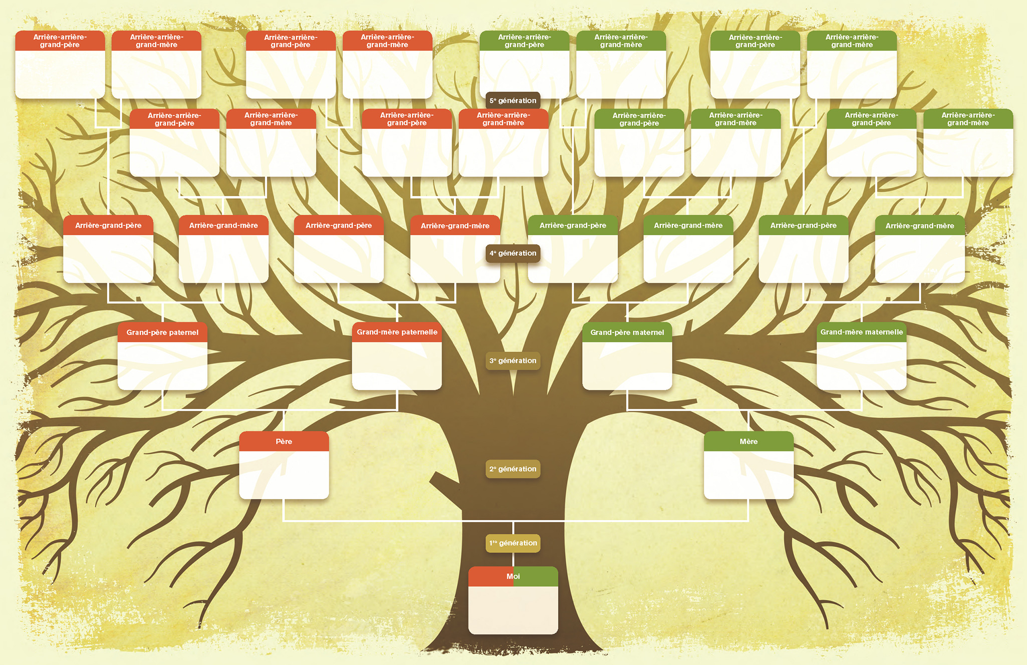 Creer Son Arbre Genealogique