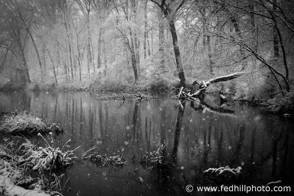 Fine art black and white photo of snowfall and reflections in pond water in Riverside Village of Church Creek, Maryland.