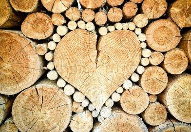 chaudières bois
