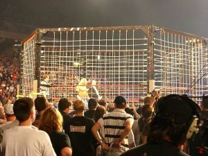 Thunderdome: Two wonks enter. One wonk leaves. (Photo of cage match from Wikipedia, under a creative commons license)