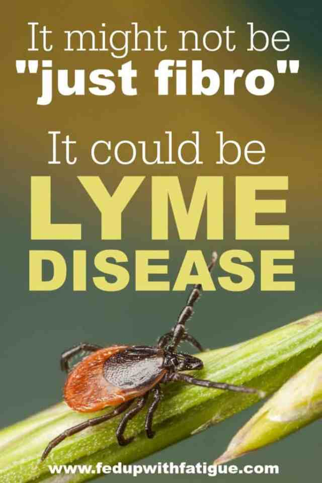 There's a lot of overlap between the symptoms of chronic Lyme disease and fibromyalgia. Your fibromyalgia symptoms could actually be caused by untreated Lyme and other tick-borne diseases.