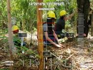 MITIS-Planting-FEED-13041914