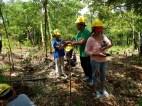 MITIS-Planting-FEED-13041923