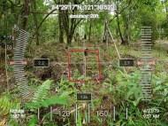 HawakKamay-TIDES-APECSchools-GPS-2704197