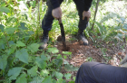 John-Marlon-Magbuo-@LQLG3-SoilSampling