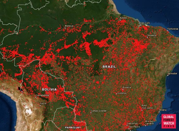 Amazon-burning.jpg