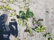 FEED-KARPOS-BOTONG-Planting-Urbiz-2710201919