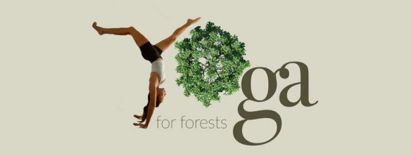 Yoga For Trees