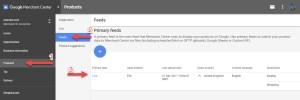 Google Merchant Primary Feed