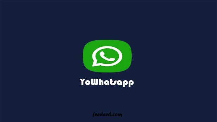 Download YoWhatsApp Apk Versi Terbaru 2021 (Anti Banned)