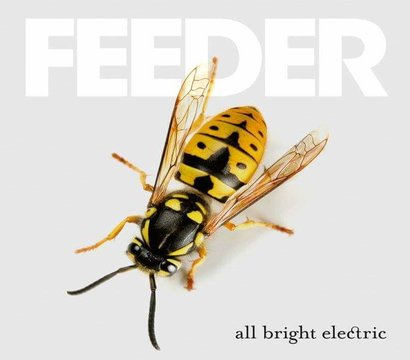 Have you got a copy of #AllBrightElectric yet? 🐝