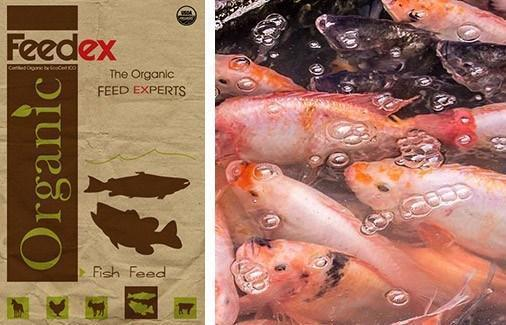Organic Fish Feed - Feedex Organic Livestock Feed