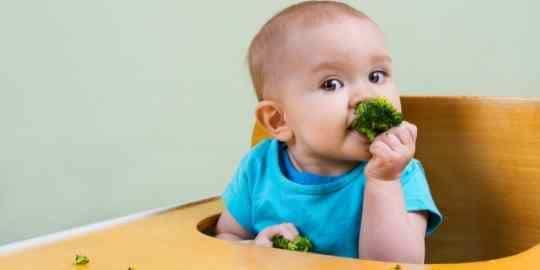 baby self feeding broccoli