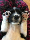 Winnie at 3 weeks