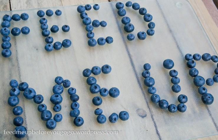 Blaubeeren für den Blueberry-Milkshake Rezept