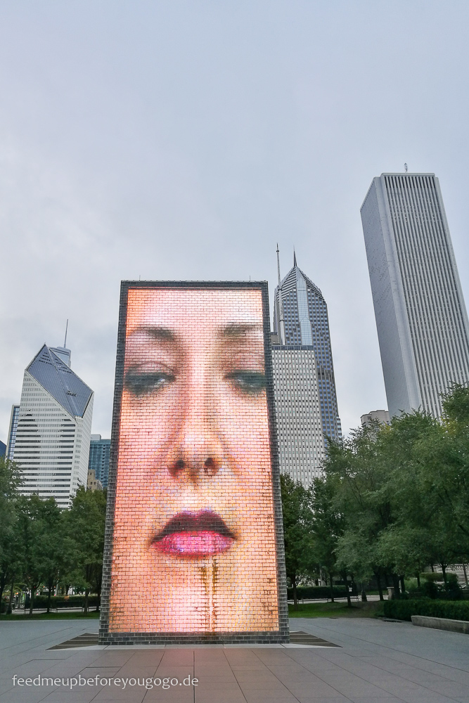 Crown Fountain Chicago Millennium Park The Loop