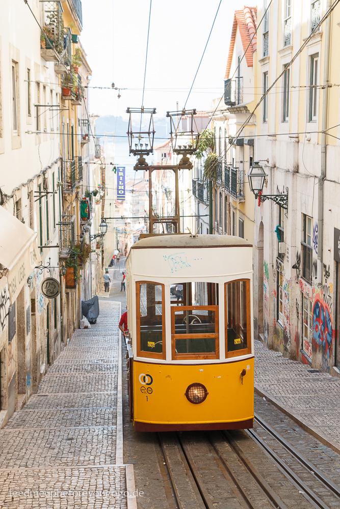 Lissabon kulinarische Tipps Bica Bairro Alto